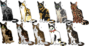 Mystery Felines by Swaps-Adopts