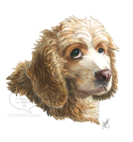 Portrait Commission - Cooper by comixqueen