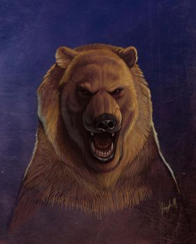 Grizzly Bear by sykohyko