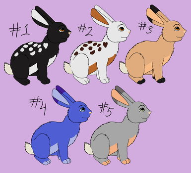 Rabbit Adopts Batch 2 - CLOSED by AshWolf-Forever