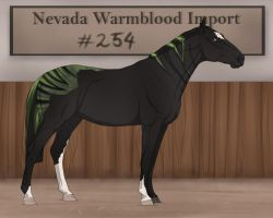 Nevada Warmblood 254 Mmm by BRls-love-is-MY-Live