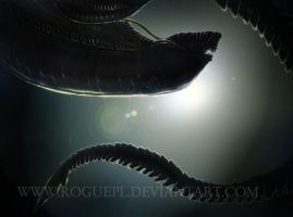 ALIEN wallpaper by RoguePL