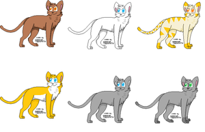 Warriors Adoptables Open by TheJackaby
