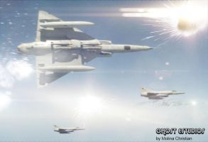 Argentines fighting falcons by Ghostestudios