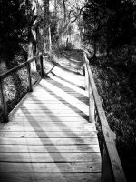 Another Path by Krida-Yoru