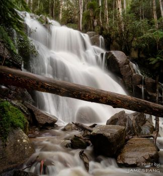 20120623 - Toorongo Falls 003 by jpang