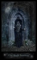 The Magic Door - ArwensGrace by scottish