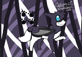 Matias Reference by kittyproc