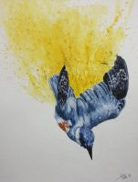 Dive Bomb by dareith