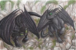 Toothless and Raven by Bonka-chan