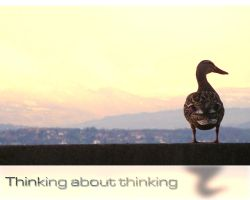 Thinking about Thinking - WP by superjuju29