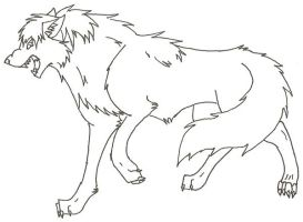 wolf sketch by wildwolves