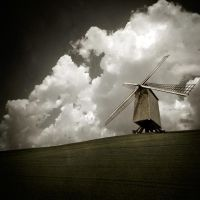 Standing Strong by Oer-Wout