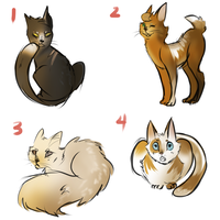 Warriors cats adopts by Bomb-Kat