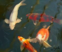 Feed the Koi by DreamingMerchant