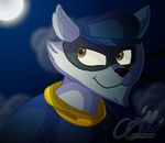 Sly Cooper by RockyGems