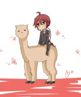 Ted On an Alpaca llama by Romi826