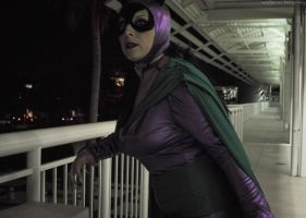 Catwoman - More of a Night Person by seethroughcrew