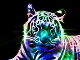 Fractal White Tiger by minimoo64