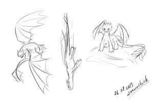 Toothless scetches by werunchick