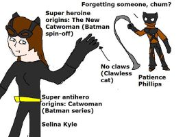 The New Catwoman vs Old Catwoman by Dinzydragon