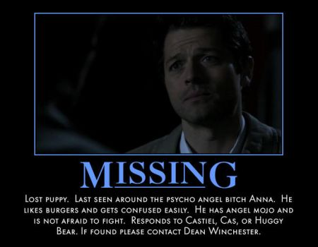 Missing Cas by calceil
