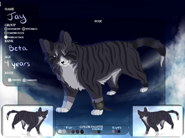 Jay Reference Sheet :TKAK: by eliza1star