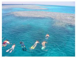 Snorkeling in Red Sea by mitch2004