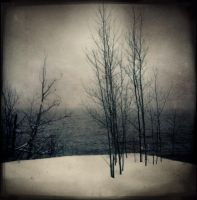 "A Winter""s Discontent by intao"