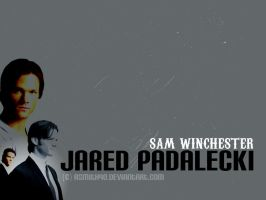 Sam Winchester Wallpaper by asmith9O