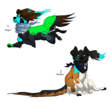 Tempo Dog Adopts - Adopted by Feralx1