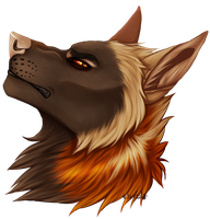 Snoot Snoot by TypicalCoyote