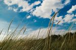 Lying in the Dunes by martineriksen