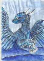 saphira in watercolor by Minerea