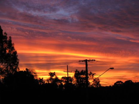 Suburban Sunset in Full Bloom6 by PinothyJ