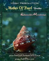 Mother Of Pearl Brushes by dmh2ads