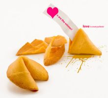 fortune cookie by snmsnl