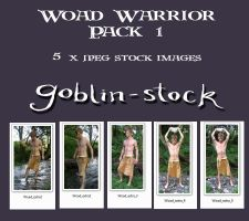 Woad Warrior Pack 1 by GoblinStock