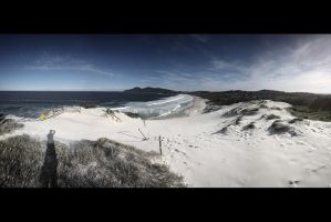 Foster Beach Pan 2 by CainPascoe
