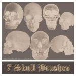7 Skull Brushes by Caitie14