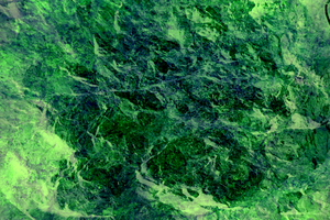 Texture - Crinkly Green by ChimeraDragonfang