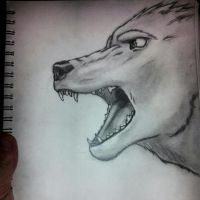 Wolf by richardtorres21
