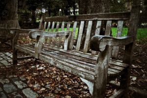 Bench by boldsoul