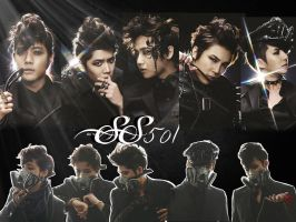 SS501 by victoria03