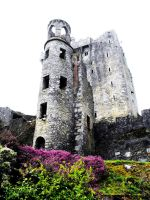 Blarney Castle, County Cork. by dagger-in-my-heart