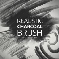 Realistic Charcoal Brush by WojciechFus