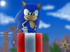 Happy Birthday Sonic! by GLaDOSHeroes2000