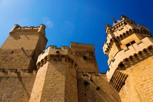 Castle of Olite - Towers by Rubengda