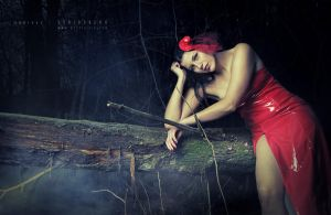 Little red riding...hat by Stridsberg