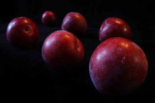 Methley Plums by quirk